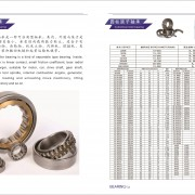 Guanxian zhaoyun bearing co. LTD